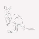 Kangaroo icon line element. Vector illustration of kangaroo icon line isolated on clean background for your web mobile app logo design. - 220963288
