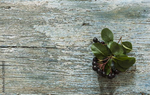 Black chokeberry (Aronia melanocarpa) berries with leafs on wooden background - 220981485