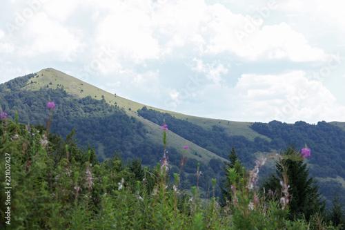 Beautiful mountain landscape, Kopaonik ,Serbia