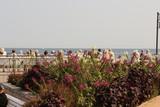 Blick über die Strandpromenade in Kühlungsborn-Ost auf die Ostsee - 221015610