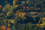 Aerial view of houses and forest in autumn season - 221021002