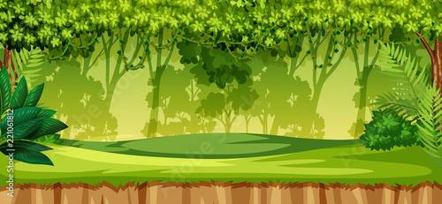 Zielony krajobraz dżungli