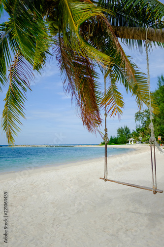 Plam tree swing at a tropical beach, Koh Phangan, Thailand.