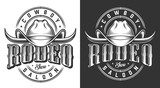 Wild west emblems - 221072664