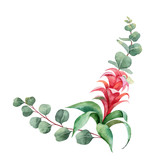 Watercolor vector branches with green eucalyptus and exotic flower. - 221077011