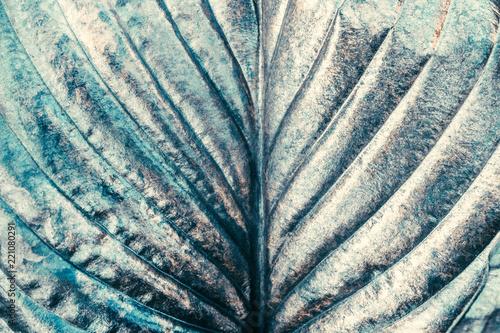 srebny-metal-malowal-zielonego-organicznie-lisc-jako-abstrakcjonistyczna-kreatywnie-sztuki-tapeta-lub-tlo-dla-projekta-zakonczenie-up
