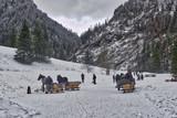 Fototapeta Horses - wycieczki piesze i góralskimi saniami w Tatrach © Jarek Witkowski