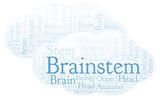 Brainstem word cloud. - 221089444