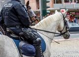 Polizei Reiterstaffel - 221094488