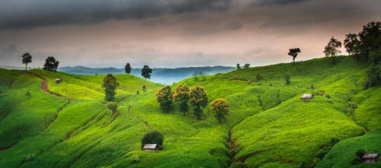 Natural scenery in the rainy season of Nan province, Thailand.