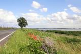 Anfahrt Usedom, Autos, Strasse, Naturschutzgebiet Peenetalmoor - 221141498