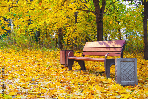 Fototapeta A Wooden Bench And A Lamppost In An Autumn Park