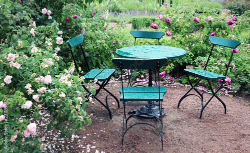 Summer rain in the Rose garden.  Classy outdoor table and chair in green color.