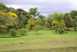 Jardins Pelo Mundo - 221230848