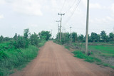 Countryside road with tree and electric pole - 221232468