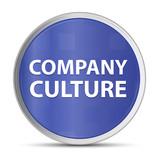 Company Culture blue round button - 221233668