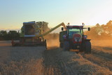 Combine harvester unloading wheat in agricultural field in Somerset - 221236808
