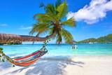 Inselparadies mit Hängematte - 221253818