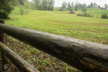 Wooden fence on a green meadow in autumn
