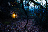 Vintage old burning yellow lantern at dark moody forest - 221283835