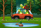 Frog travel by car in forest - 221315001