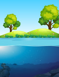 A beautiful nature landscape - 221315046