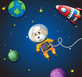 A poodle in space - 221315866