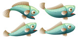 A set of fish on whitr background - 221317075