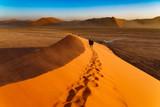 Huge dune and tourists - 221318870