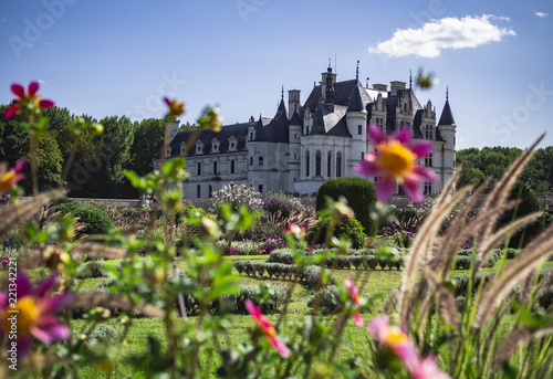 Foto Murales French castle with french gardens from