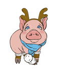 Pig in Christmas costumes, vector illustration