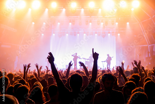 The crowd in a concert - 221364852