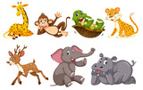 A set of wild animals - 221370265