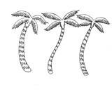 Nice illustration of some tropical palm trees - 221375696