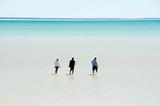 Shell Beach - Shark Bay - Western Australia - 221380646