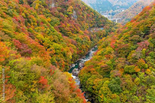 Autumn landscape in kinugawa