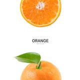 Creative layout made of orange . - 221390078