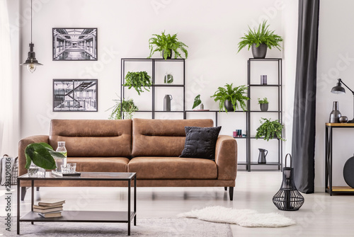 Table in front of leather sofa in white apartment interior with lamp, posters and plants. Real photo © Photographee.eu