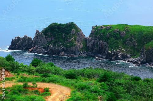 Leinwandbild Motiv high seashore greenery of the cliff