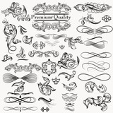 Collection of vector calligraphic  decorative elements for design - 221406006