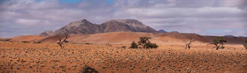 Sossusvlei Namib Desert, in the Namib-Naukluft National Park © mstarling