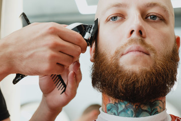 Skinhead bearded tattooed man in barbershop. Barber cuts hair with trimmer.