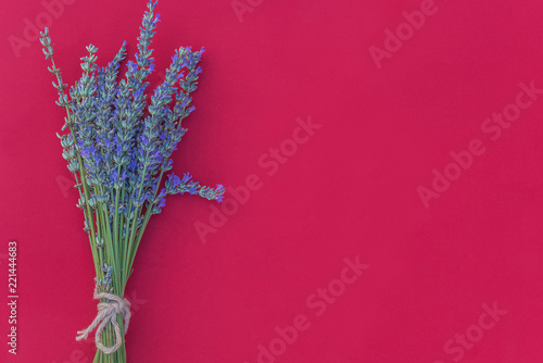 Bouquet of lavender flowers on red background with copy space