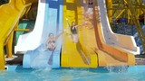 summer entertainment at aquapark, fun girlfriends slip down on water slide Dives into pool with Splashing on vacation - 221446282
