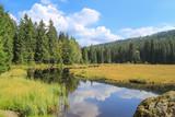 Bayerischer Wald, Großer Arbersee - 221449207