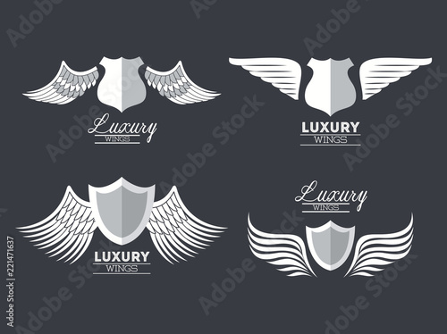 Zestaw luksusowych srebrnych skrzydeł