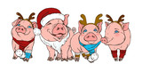 Pigs in Christmas costumes