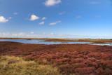 Insel Benbecula, Äußere Hebriden - 221499620