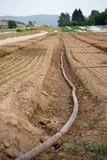 Wasserschlauch auf trockenem Acker - 221499652