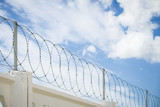 Concrete wall with barbed wire on background. The concept of prison, salvation, refugee. Copy space - 221526088